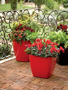 Our line of Viva self-watering planters help make the most of a small patio or balcony space. Lots of sizes and colors to choose from.