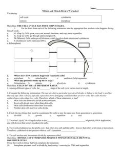 Cell Division and Mitosis Worksheet Answer Key with ...