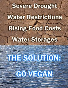 the solution to: severe drought, water restrictions, rising food costs, and water storage costs is to go #vegan