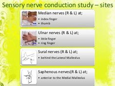 NERVECONDUCTION  STUDY   Garaka Rabel