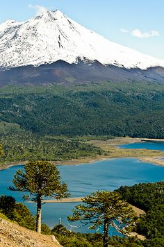 Llaima volcano in the background, from the ascent to Sierra Nevada, Conguillio National Park, Chile Sierra Nevada, Mountain Landscape, Beautiful Places To Visit, Solo Travel, Beautiful Landscapes, Wonders Of The World, South America, Places To Go, French Polynesia