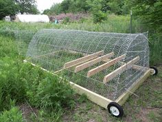 Chicken tractor (fancy for moveable pen)