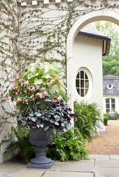 Container Flowers, Container Plants, Plant Containers, Container Design, Balcony Garden, Garden Pots, Garden Ideas, Planter Garden, Planter Ideas