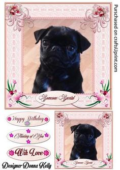 Yes Please Multi Use card front on Craftsuprint designed by Donna Kelly - An Adorable Puppy adorns the center of this pretty pink framed card. Pink Flowers enhance the lace frame. Sheet includes an approx 7x7 card front,large gift tag, and 3 sentiment tags. sentiments read Someone Special, Happy Birthday, Thinking of You,