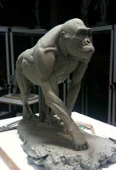gorilla hand anatomy - Google Search