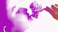 Productivity Hack Of The Week: Use Aromatherapy To Improve Your Work | Fast Company | Business + Innovation
