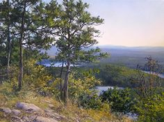 Looking Southwest, Above the Lake by Andrew Orr Oil ~ 12 x 16
