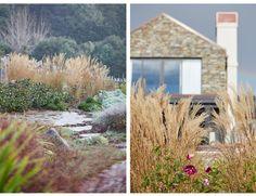 Residential and Public Landscape Design and Landscape Architecture. Landscape Architecture, Landscape Design, Country Roads, Garden, Garten, Gardening, Outdoor, Landscape Designs, Gardens