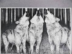 Los tres tenores. Wolf pen drawing. Todos los dibujos son mios. All drawings are mine.