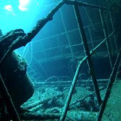 Entering the engine room. Shipwreck, Whale, Aquarium, Engineering, Room, Animals, Instagram, Aquarius, Animales