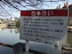 苦悩の神戸市職員