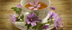 Petals and tea cup flowers lilac abstract HD Wallpaper Malva, Coffee Time, Tea Time, Camomille Romaine, Le Psoriasis, Le Cacao, My Tea, Kraut, Herbal Medicine