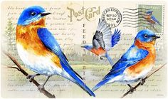 Bluebird Postcard Designed Tempered Glass Cutting Board