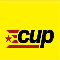 WEBSEGUR.com: ENTREVISTA A ALBERT PIJUAN (CUP) CALAFELL