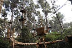 Ce parc propose de très nombreuses activités d'accrobranche, où les visiteurs doivent faire preuve de courage et de sens de l'équilibre! C'est le lieu idéal pour passer un moment convivial et sportif entre amis ou en famille. Source image: Coudou Parc