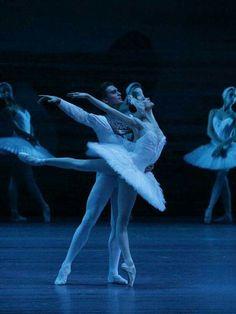 """<<Svetlana Zakharova and Denis Rodkin in """"Swan Lake"""" (Bolshoi Ballet)>>"""