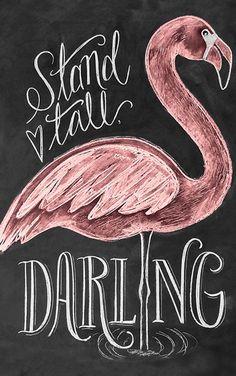 Flamingo typography quote wall art