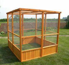 Top 10 bird aviary for sale : Cheap Bird Aviary For Sale. Cheap bird aviary for sale. Pet Bird Cage, Bird Cages, Parrot Cages, Rabbit Cages, Bird Aviary For Sale, Quail Coop, Rabbit Run, Bird House Kits, Parrot Toys