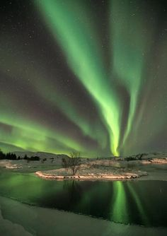 Aurora Borealis, Iceland or YellowKnife . I'd love to go to those places to see the Northern Lights . Beautiful Sky, Beautiful World, Beautiful Places, Beautiful Pictures, All Nature, Amazing Nature, Ciel Nocturne, See The Northern Lights, Jolie Photo
