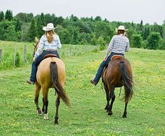 Horseback Trail Rides of Branson, Missouri, is an exciting adventure for the whole family to enjoy through some of the most beautiful, lush areas in the Ozark Mountains.