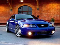 One day!! Sonic Blue SVT Cobra