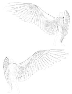 In this tutorial I will show you how to draw wings on the back of a human, creating an angel. Angels, though seen as spiritual rather than material, are pictured as winged humans. But wings are not. Fairy Wings Drawing, Angel Drawing, Human Drawing, Drawing Poses, Angel Sketch, Angel Wings Art, Angel Art, Angel Wings Painting, Anatomy Art