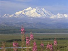 Fairbanks/Denali National Park, Alaska...we lived there until I was 2 years old so I don't remember it, but I've seen pictures and I'm determined to go there again now that I'm old enough to appreciate it more.