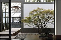I.M. Pei, Suzhou Museum, courtyard, Kerun Lp Suzhou Museum, Chinese Courtyard, Chinese Garden, Asian Interior, Patio Interior, Zen Style, New Chinese, Chinese Style, Indoor Garden