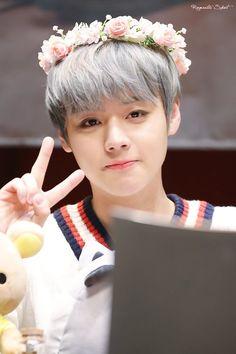 Wanna-One - Park Jihoon Baby Park, Cho Chang, Lai Guanlin, Child Actors, Ha Sungwoon, Kim Jaehwan, Lucky Girl, Flower Boys, Produce 101