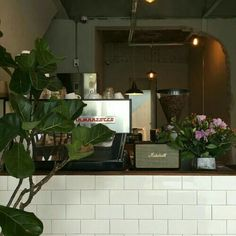 it's a family affair Plant Aesthetic, Japanese Aesthetic, Aesthetic Photo, Aesthetic Pictures, Cafe Shop, Coffee Staining, Cafe Design, Beautiful Space, Shades Of Green