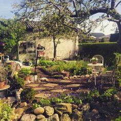 Blomsterverkstad: Morgonpromenad i trädgården