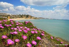Visit Portugal @visitportugal  Feb 8 View translation #Évasion en #Europe: l'#Algarve,
