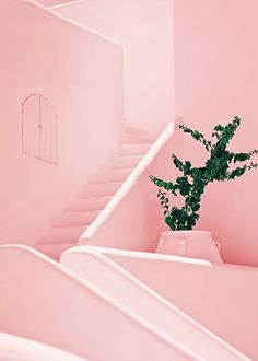 Pink stairs Julisteet