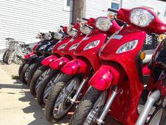 Island Moped and Bike 401-466-2700 www.bimopeds.com