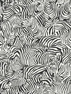 wallpaper bw black and white pattern zebra