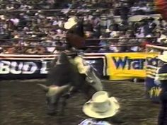 PRCA world champion Ty Murray rides 1993 NFR top bull David Bailey's Gunslinger at a 1994 Professional Bull Riders event in Nashville, TN. Ty Murray, Rodeo Cowboys, Bull Riders, Nashville, Youtube, King, Youtubers, Youtube Movies