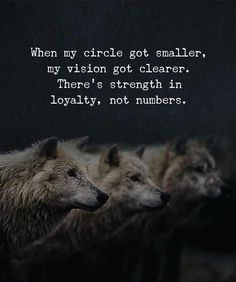 Quotes : When my circle got smaller my vision got clearer. Positive Quotes : When my circle got smaller my vision got clearer.Positive Quotes : When my circle got smaller my vision got clearer. True Quotes, Great Quotes, Quotes To Live By, Motivational Quotes, Inspirational Quotes, Profound Quotes, Work Quotes, My Love Quotes, Bad Family Quotes