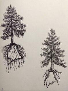 Pine Tree State tattoo design two by ramble-inthe-roots 19-28 feb. I really love this. Show where my roots will always be no matter where life takes me. <3 Gah it's so perfect!