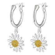 Daisy 10mm drop earrings - E2007 - Daisy London - Ladies Jewellery  Delicate hoops are the perfect setting for these pretty daisies #penmans #daisies