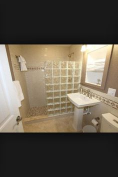 Glass blocks and small bathroom