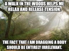 A Relaxing Walk in the Woods