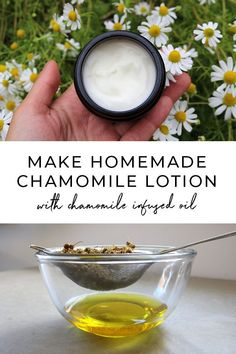 DIY homemade chamomile lotion recipe using simple chamomile infused oil. A simple DIY skincare recipe for normal to sensitive skin #diybeauty #naturalskincare #herbalism Homemade Skin Care, Homemade Beauty Products, Diy Skin Care, Natural Products, Homemade Deodorant, Diy Products, Diy Lotion, Lotion Bars, Lotion Recipe