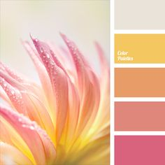 Delicate shades of pink with yellow highlights and silver lines are the perfect combination for basic clothes of any girl. Warm pastel hues are ideal for wedding decor and for design of the bride's bouquet. Softness of palette shades allows you to create the most delicate floral image.