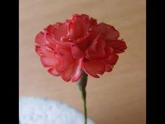 Flowerpaste carnations how to make sugar craft fondant carnations tutorial cake carnation - YouTube