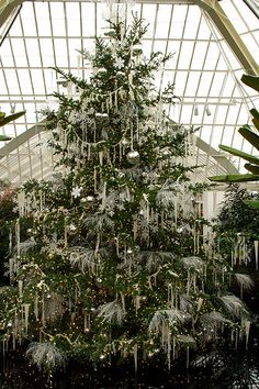 all white decorated christmas tree