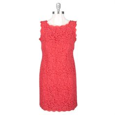 Adrianna Papell Petite Lace Dress with Two-Way Zipper #VonMaur #AdriannaPapell #Coral #Lace