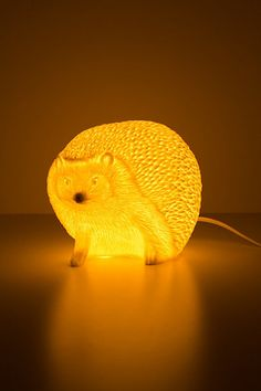 {Glowing Hedgehog Lamp} Hedgehog Pet, Interior Exterior, My New Room, Home Lighting, Luxury Lighting, My Dream Home, Cute Gifts, Home Accessories, Kids Room