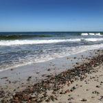 Piaszczysta Plaża Nad Bałtykiem