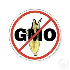 Más de 600 productos y marcas indicando si contienen ingredientes transgenicos! Tienes derecho a saber que lleva tu comida, mantente informad@! Di no a los alimentos transgenicos! #android