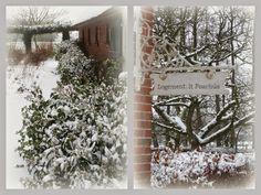 logement it foarhus: Een witte wereld.....